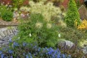Фото 17 Рокарий (48 фото): растительно-каменный тандем на плоской поверхности