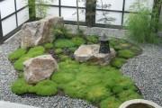 Фото 9 Рокарий (48 фото): растительно-каменный тандем на плоской поверхности