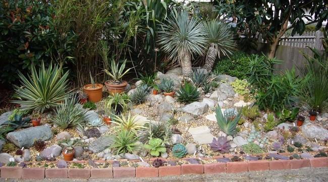 Рокарий на небольшой возвышенности с южными растениями