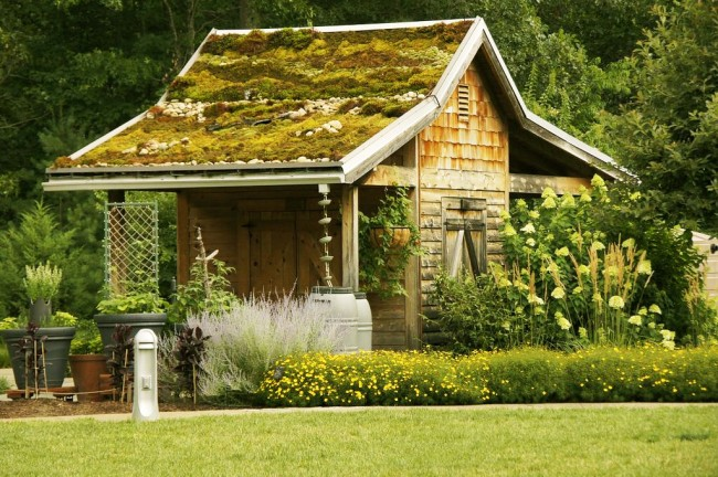 Сарай для дачи может стать не только местом для хранения всего необходимого инвентаря, а и декоративной постройкой