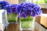 Фото 6 Анемоны, посадка и уход (50 фото): как вырастить хрупкий цветок-неженку