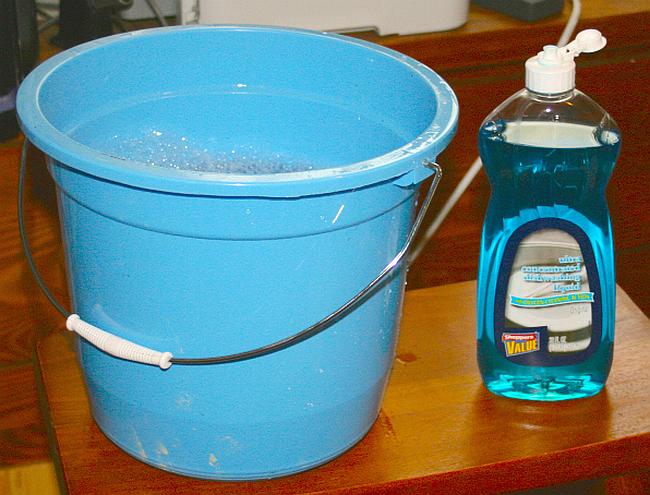 Как избавиться от муравьев в частном доме. Против муравьев имеет эффект мыльный раствор и полоски моющих средств