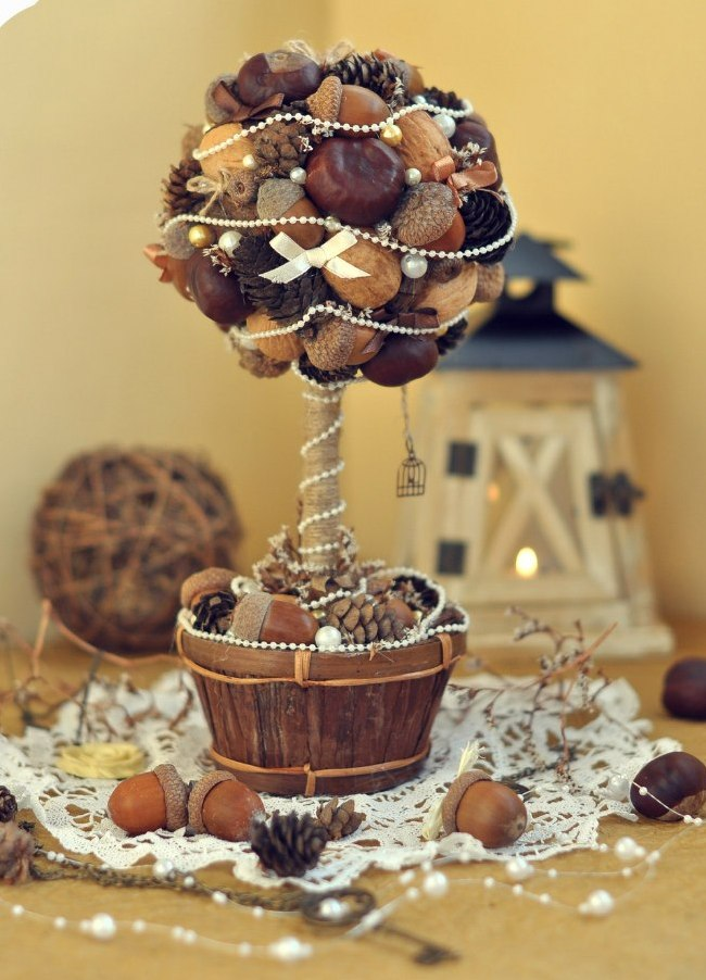 Как создать домашний топиарий. Осеннее изобилие: топиарий их каштанов, орехов и желудей