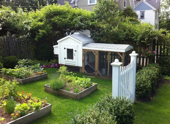 Курятник своими руками. Симпатичный летний белый мини-курятник, который можно ставить и на заднем дворе и со стороны фасада дома