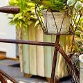 Необычные украшения для сада своими руками (100+ идей): оригинальные задумки и пошаговая реализация фото