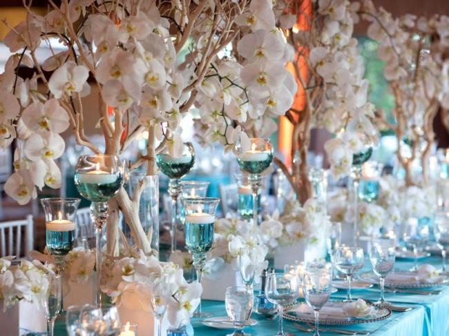 Оформление зала на свадьбу с помощью живых орхидей