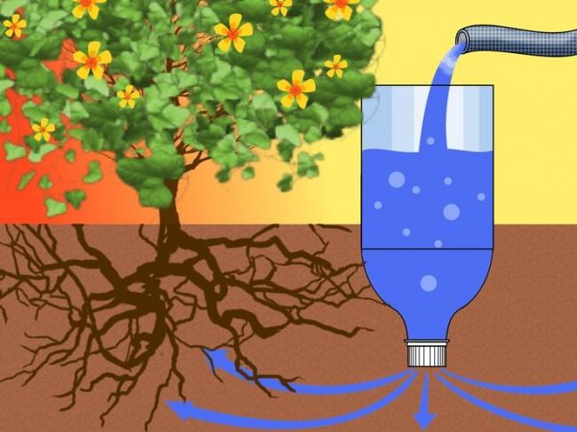 Автоматический полив рассады и декоративных растений в ваше отсутствие с помощью вкопанной рядом с корнями пластиковой бутылки с небольшими просверленными в горлышке или крышечке отверстиями