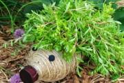 Фото 4 Поделки из пластиковых бутылок для сада (77 фото): простой и оригинальный декор