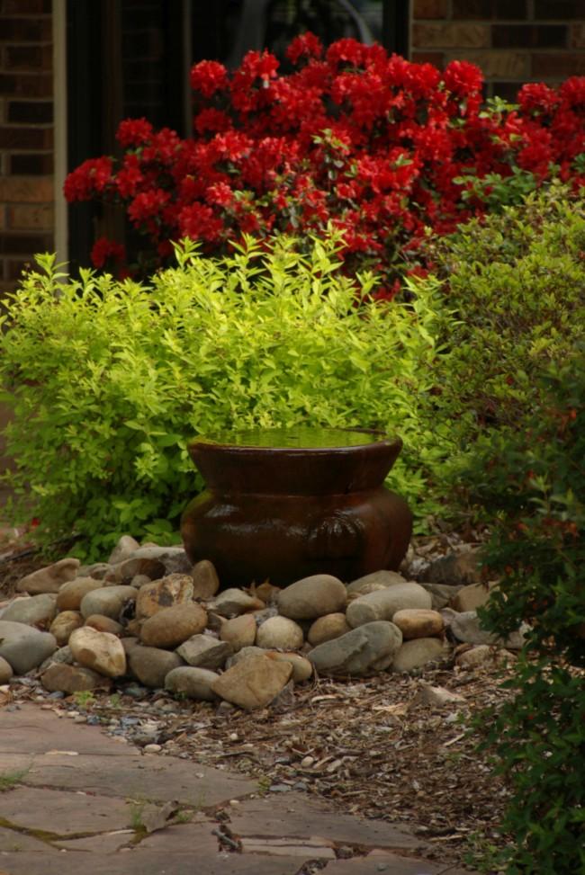 Спирея японская и азалия в саду с азиатским колоритом