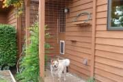 Фото 6 Делаем вольер для собаки своими руками (50 фото): что учесть и как построить