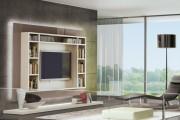 Фото 5 Мебель в гостиную под телевизор от Mr. Doors: воплощение стиля и функциональности