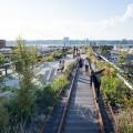 Почему ландшафтные дизайнеры станут ключевыми для городов Америки фото