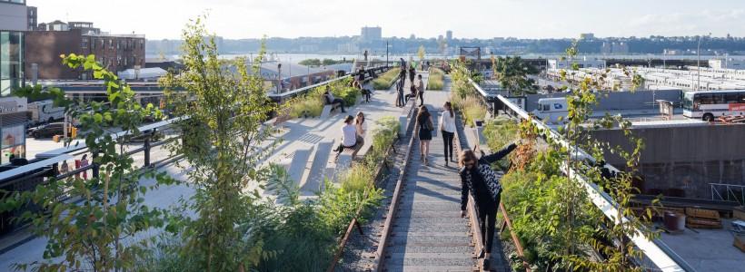 Почему ландшафтные дизайнеры станут ключевыми для городов Америки