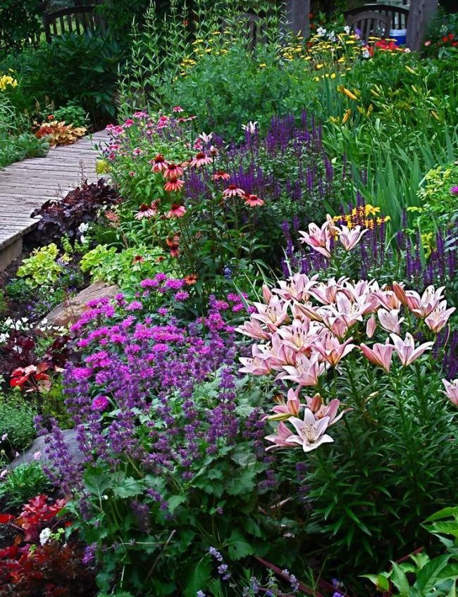 Миксбордер - жемчужина вашего сада