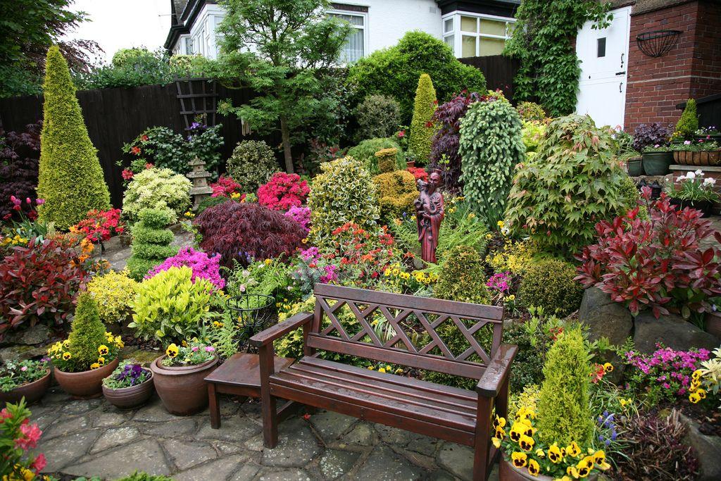 Миксбордер идеи примеры садовый мир