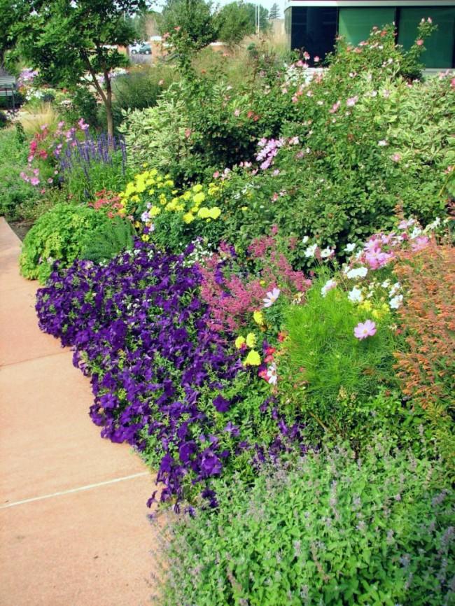 Цветник из многолетних растений можно разбавить однолетними, которые будут отвлекать взгляд от опавших культур