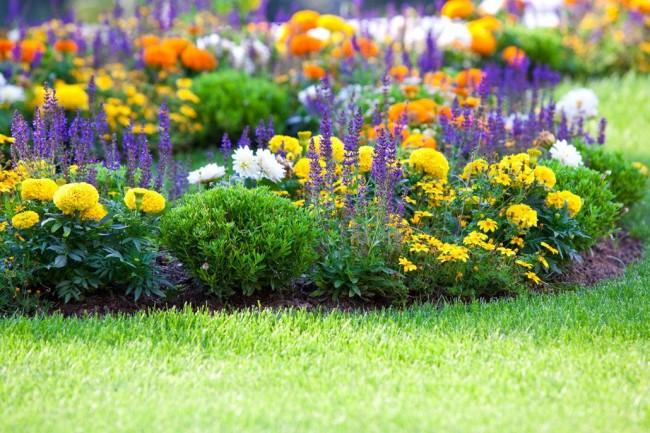 Миксбордеры из хвойных, лиственных и многолетников выглядят нарядно с весны до осени