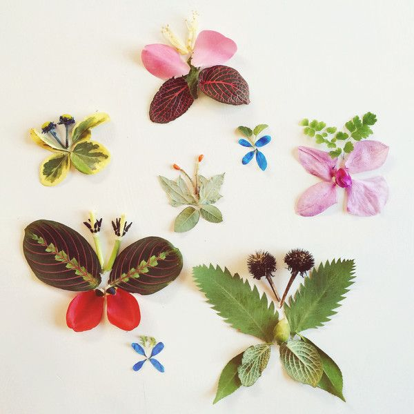 """Аппликация """"Бабочки"""" из листьев"""