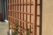 Фото 12 Руководство по созданию шпалеры для винограда своими руками (47 фото)