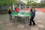 Фото 11 Теннисный стол своими руками: размеры, виды и особенности сборки (51 фото)