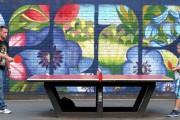 Фото 7 Теннисный стол своими руками: размеры, виды и особенности сборки (51 фото)