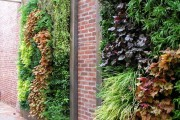 Фото 8 Вертикальное озеленение (58 фото) — интересный способ экономии пространства