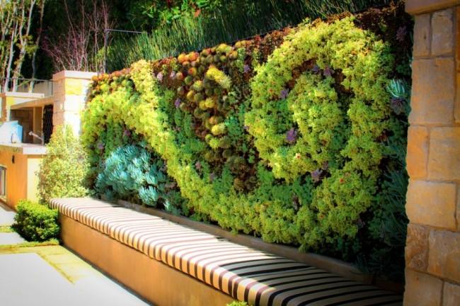 Забор с вертикальным озеленением