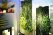 Фото 13 Вертикальное озеленение (58 фото) — интересный способ экономии пространства