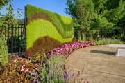 Фото 17 Вертикальное озеленение (58 фото) — интересный способ экономии пространства