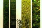 Фото 18 Вертикальное озеленение (58 фото) — интересный способ экономии пространства