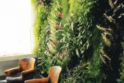 Фото 20 Вертикальное озеленение (58 фото) — интересный способ экономии пространства