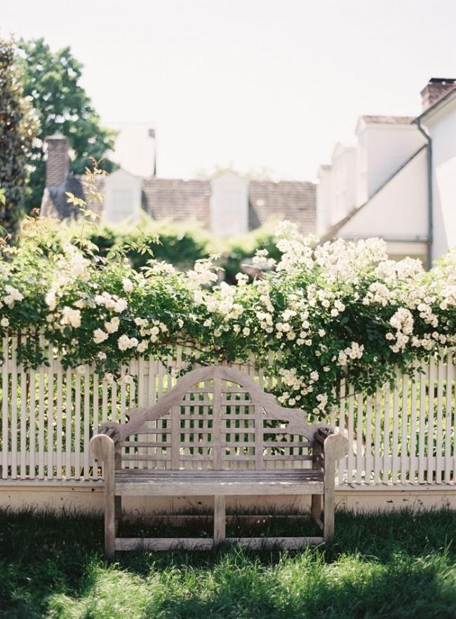 Деревянные заборы и ограждения для дома. Классические штакетники часто используют как опору для вьющихся растений или высоких кустарников