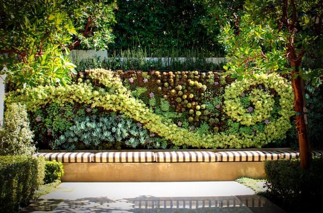 Суккуленты. На пике моды в ландшафтном дизайне - вертикальное озеленение с помощью суккулентных растений. Из них можно высаживать даже масштабные мозаики