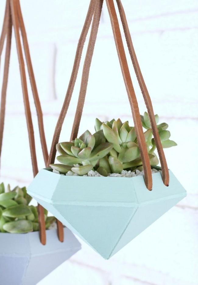 Суккуленты. Неглубокие горшки причудливой формы или из необычных материалов - лучшие для суккулентных комнатных растений