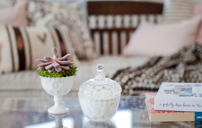 Суккуленты. Распространенный и любимый многими комнатный цветок - эхеверия. Цвет ее листьев сильно варьируется