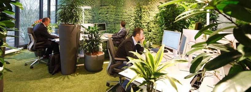 Инновационный офис с изысканным и необычным дизайном