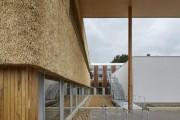 Фото 9 Смелый стартап под соломенной крышей