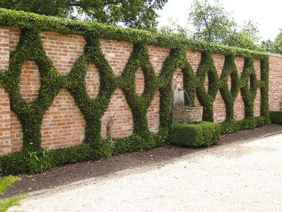 Кирпичный забор можно украсить вьющимися растениями