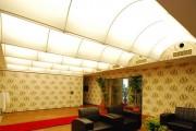 Фото 7 Натяжные потолки для зала (62 фото): выбор материала и стиля