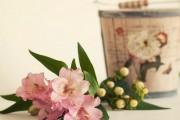 Фото 16 Альстромерия (50 фото): яркая и привлекательная лилия инков