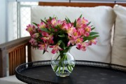 Фото 22 Альстромерия (50 фото): яркая и привлекательная лилия инков