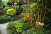 Фото 18 Альстромерия (50 фото): яркая и привлекательная лилия инков