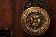 Фото 10 Дверные ручки для входных дверей (60 фото): виды изделий и правила выбора
