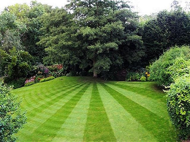Электрическая газонокосилка. Украсить газон идеально ровными концентрическими или спиральными рисунками можно, закрепляя газонокосилку тросом за ствол дерева, бетонную клумбу, или специально для этого вбитый в центре будущего рисунка колышек