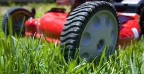Электрическая газонокосилка: рейтинг, лучшие модели, как подобрать нужную модель фото