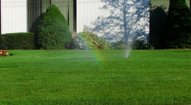 Бензиновые самоходные газонокосилки. Кроме срезания, подкормки и правильных доз солнца, для травы важен, конечно же, полив. У бензиновых газонокосилок есть неоспоримый плюс в сравнении с электрическими - у них практически нет ограничений по использованию на влажной траве