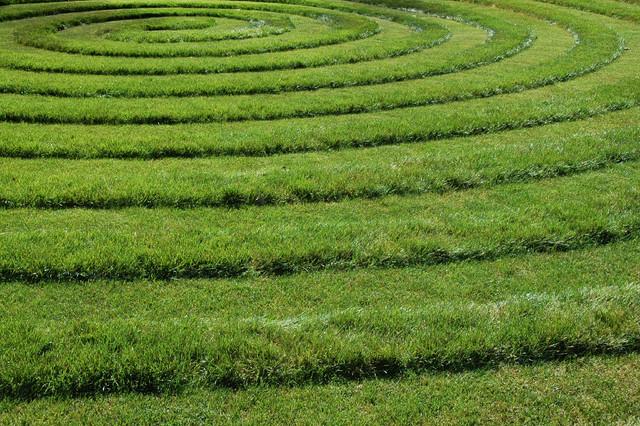 Бензиновые самоходные газонокосилки. Самый простой способ избежать появления сорняков и сберечь ровный графичный вид газона - обработать предвсходовыми гербицидами после второго покоса весной