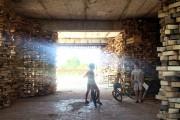 Фото 2 Креативный проект «Павильон Сильпо»