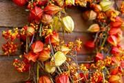 Фото 4 55+ фото Физалис — выращивание и грамотный уход