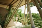 Фото 2 Уютный отель из бамбуковых панелей